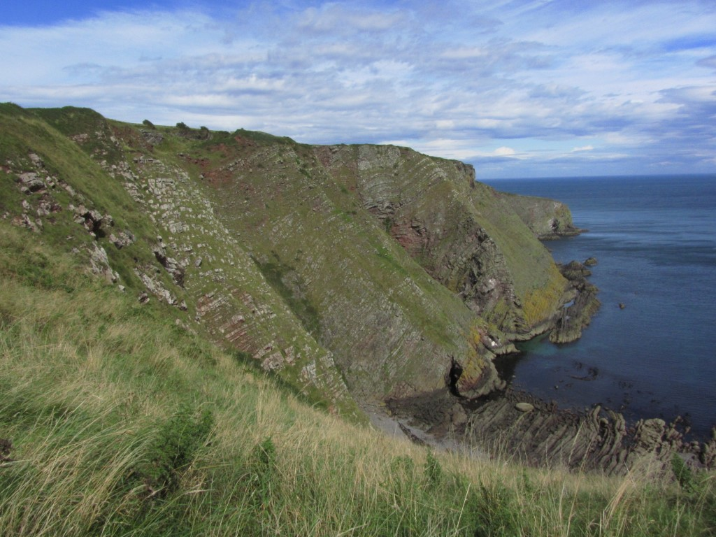 The cliffs at Blaikie Heugh are the highest on this section of the coast at just over 100 metres.