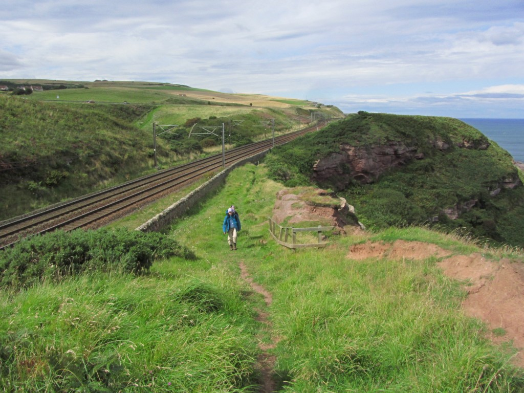 The Berwickshire Coastal Path hemmed in between the railway and the cliffs above Lamberton Beach makes for several miles of good coastal walking.